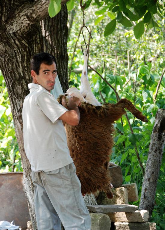 Azerbaijan Travel - Road to Xinaliq - Slaughtering a Lamb