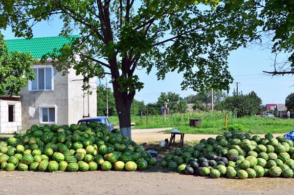 Road to Vylkove - Roadside Vendor